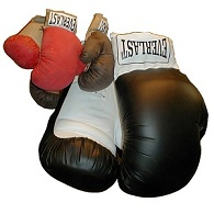 Huge PVC Boxing Glove - Click here for details